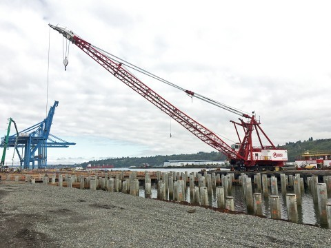 Tacoma - pile driving at Husky Terminal will resume-sm