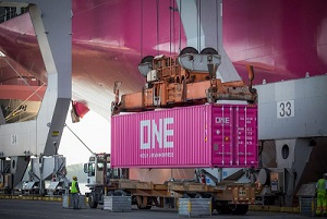 Stork makes first deliveries to Savannah - sm 2